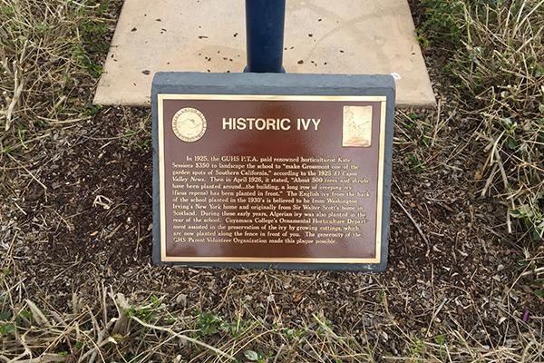 Historic Ivy Plaque